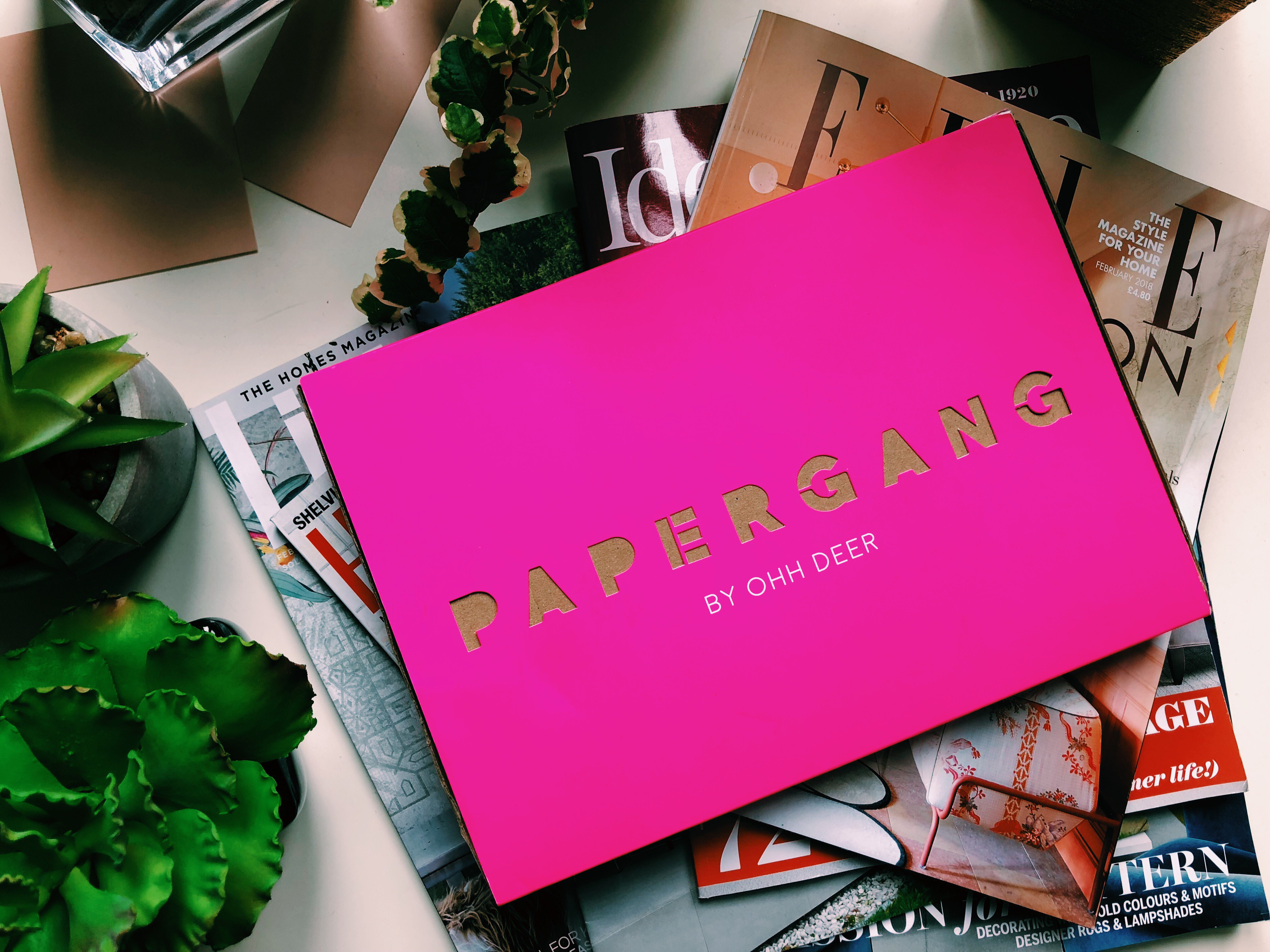 PAPERGANG FEBRUARY 2018: REVIEW
