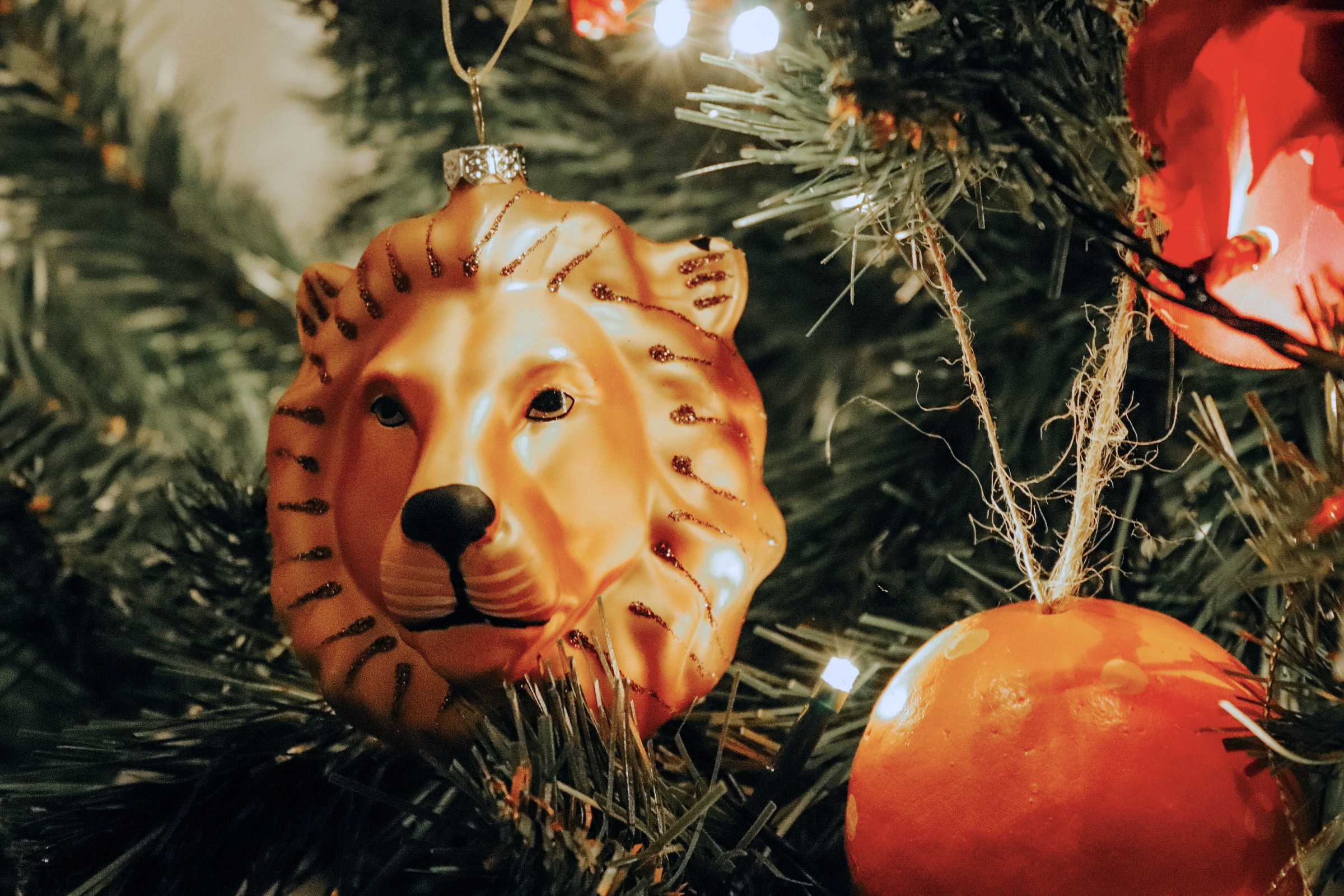 WHAT'S ON MY CHRISTMAS TREE IN 2019?
