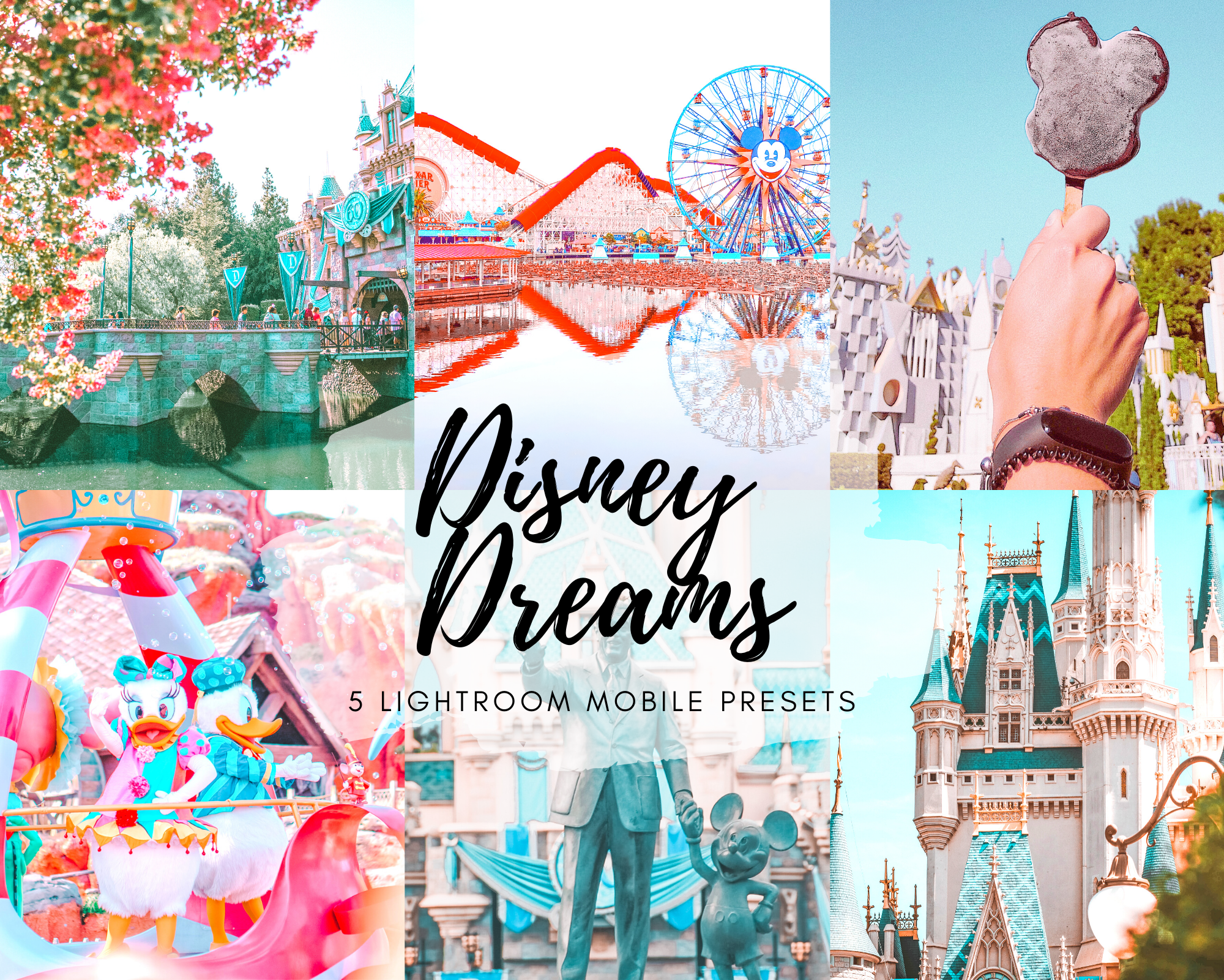 """Rich results on Google's SERP when searching for 'Lightroom Mobile Preset"""", Disneyland castle, Lightroom Mobile Preset"""